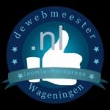 Meindert-A-Jorna-google's Avatar