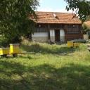 Bijen-project-kroatie27 (Medium)