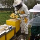kroatie-bijenproject-kinderen92-2014